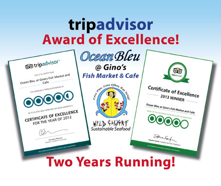 Trip Advisor Award of Excellence!