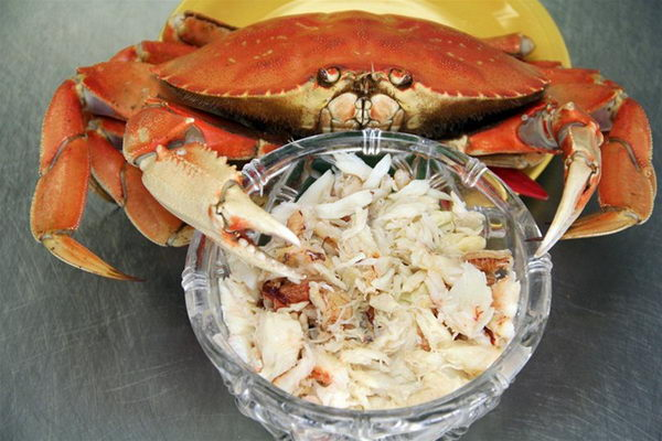 Fresh cooked Dungeness crab with hand picked crab meat